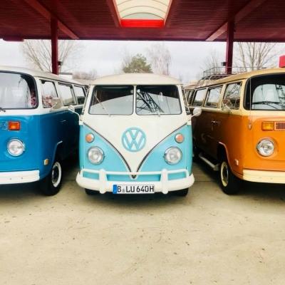 Old Bulli Berlin - VW T1 - Hochzeitsauto - Hochzeitsbulli