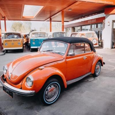 Old Bulli Berlin - Bulli-Vermietung - Bulli-Verkauf - Bulli-Handel - VW Käfer Cabrio - VW Käfer kaufen
