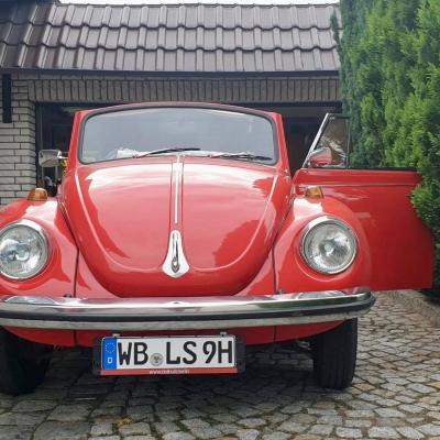 Old Bulli Berlin - VW Käfer - Bulli-Handel - Bulli-Verkauf - Käfer-Verkauf - VW Käfer GSR