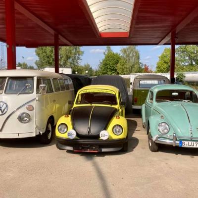 Old Bulli Berlin - Bulli-Handel - Bulli-Verkauf - VW Käfer GSR - Bumblebee